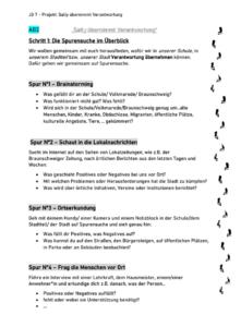 """Projekt: """"Sally übernimmt Verantwortung"""" in JG 7"""